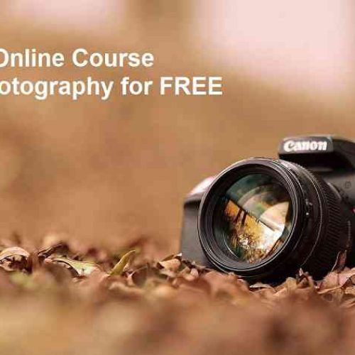 Wondering How to Learn Photography At Home? See Here.